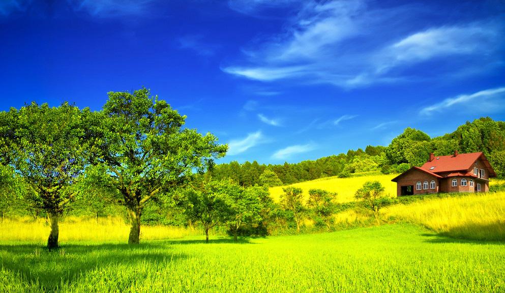 Красивые картины природы пейзажи