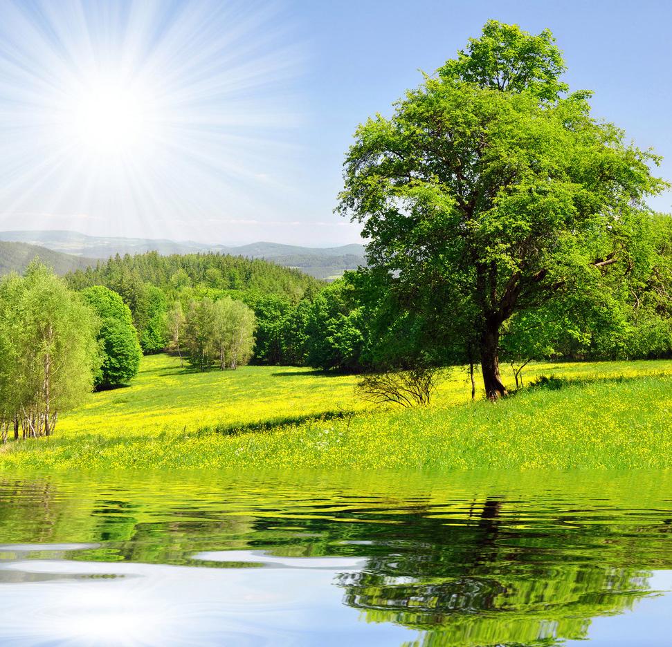 На фото прекрасные летние пейзажи