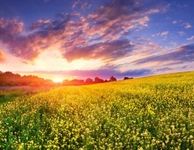 Потрясающе красивые закаты и восходы
