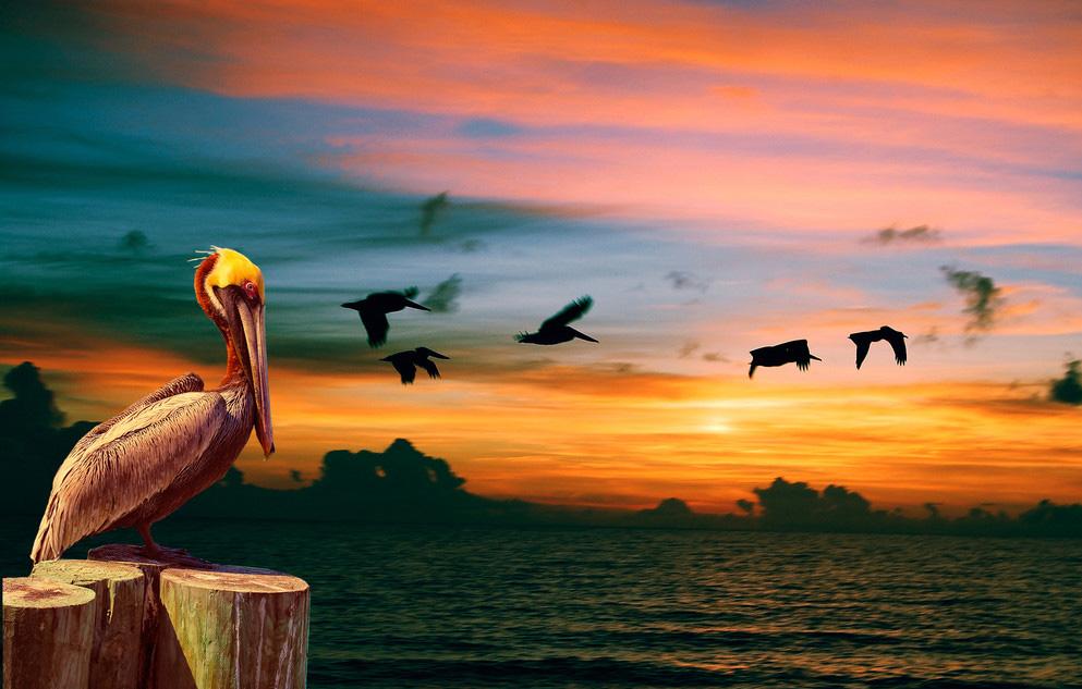 Очень красивый закат на море