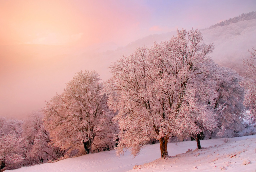 Зимний рассвет эта сказочная